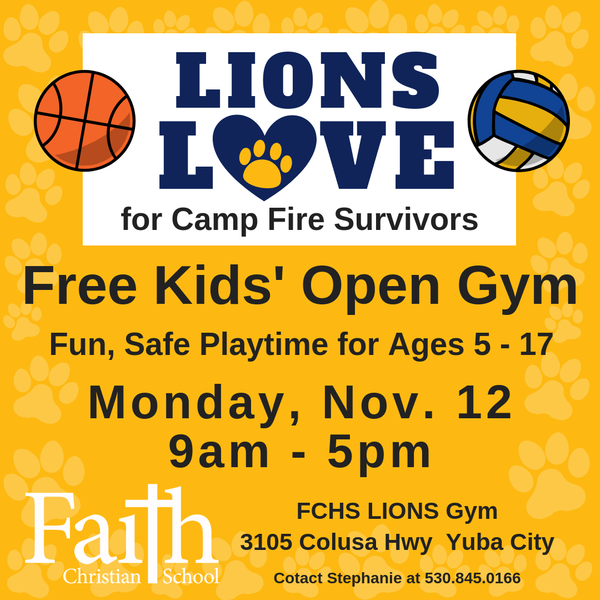 LIONS LOVE Camp Fire Kids' Open Gym